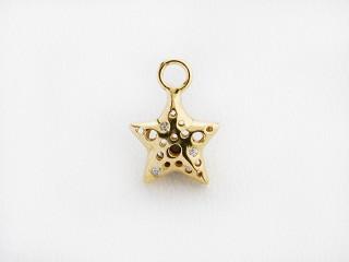 Dream On vedhæng 11 x 11 mm forgyldt sølv stjerne m. mønster og syn. zircon